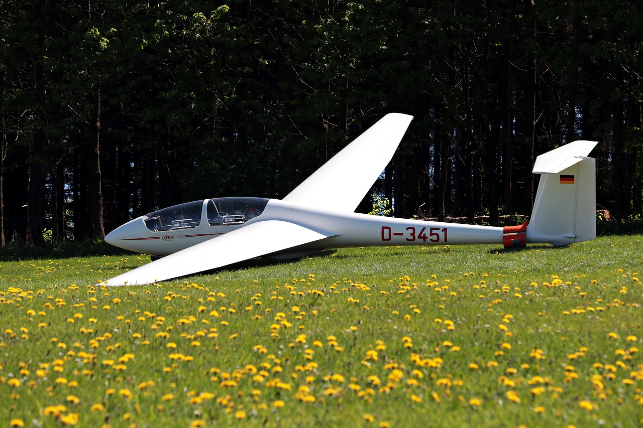 hobby Flugsimulator