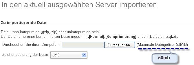 Datenbank import