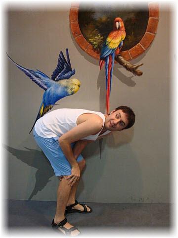 Pseudo-3D Bild-Papagei