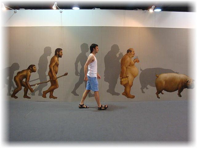 Pseudo-3D Bild-Vom Affen zum Schwein