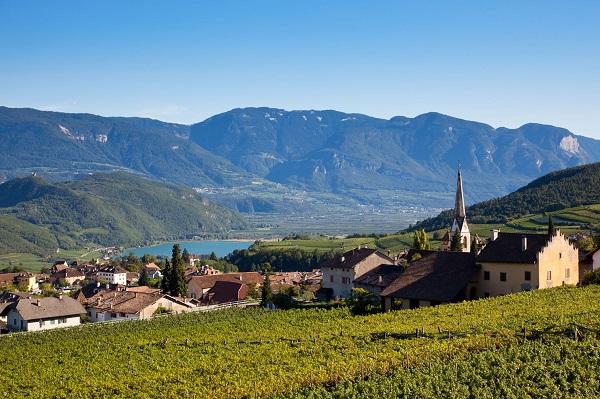 Kulinarisch reisen im Herbst: In vielen deutschen und europäischen Regionen - etwa am Kalterer See in Südtirol - können sich Gäste auf kulinarische Leckerbissen freuen.