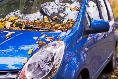 Fahrzeugpflege im Herbst und Winter