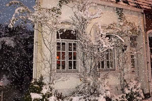 kalte Jahreszeit winter