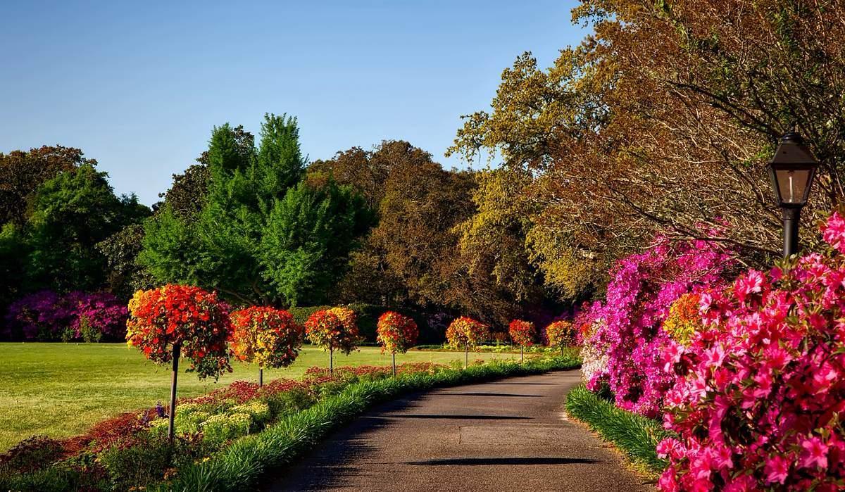 garten-garden